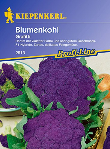 Kiepenkerl Blumenkohl - Grafitti, violett