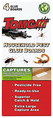 Tomcat Household Pest Glue Boards Includes 4 Boards  Captures Ants Spiders Roaches Scorpions and Other Unwanted Insect Pests  PesticideFree