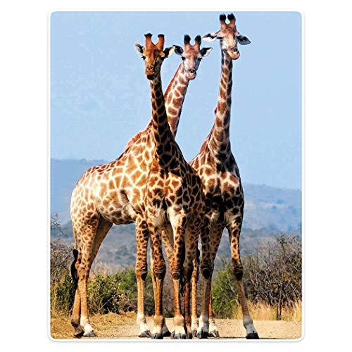 YISUMEI Kuscheldecke Giraffen Decke Flauschige Weich Fleecedecke für Sofa Bett,120x150cm