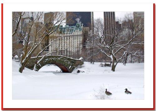 Love Bridge in Central Park, New York - Handmade Christmas Photo Greeting Cards