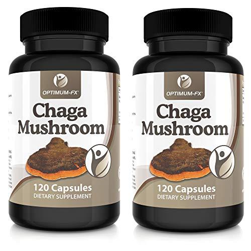 Chaga Pilz Kapsel Ergänzungsmittel – Reiner Chaga - Premiumqualität – Keine Tabletten oder Pulver – Geeignet für Vegetarier und Veganer – 120 Kapseln