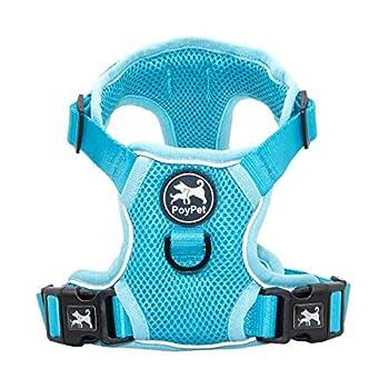 PoyPet Reflective Soft Breathable Mesh Dog Harness No Choke Double Padded Vest Adjustable Light Blue,S