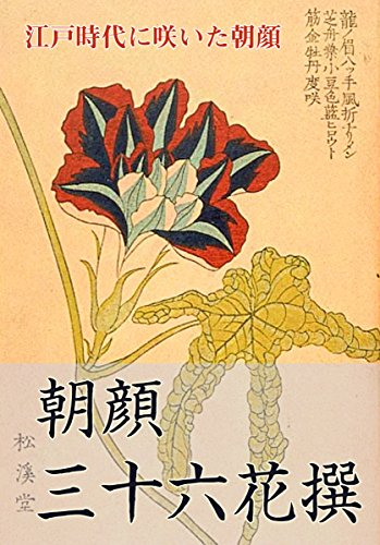 36 Japanese morning glory in Edo (Japanese Edition)