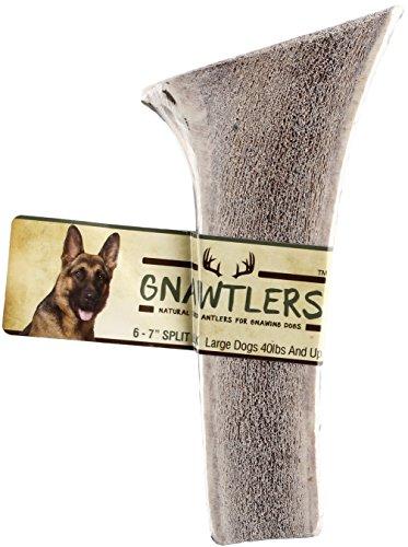 Gnawtlers - Premium Split Elk Antlers For...