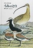 うみのとり (薮内正幸・日本の野鳥6【ハードカバー版】) (日本の野鳥 6)