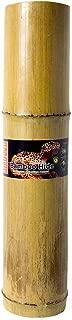 Galapagos (05440 Bamboo Hides, Hollow Tube, 18