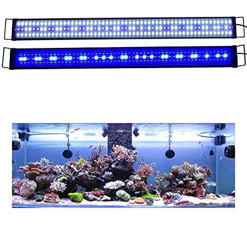 KZKR LED Aquarium Hood Lighting 60-72 inch Fish Tank Light Lamp for Freshwater Saltwater Marine Blue and White Decorations Light 5-6ft 150cm - 180cm (36W)