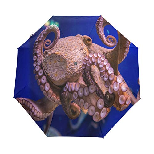 Octopus zoutwater Aquarium Reizen Paraplu Winddichte Automatische Paraplu's-Factory Outlet Paraplu