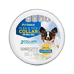 best flea collar for dogs