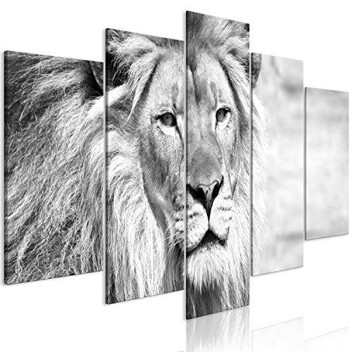 murando Cuadro en Lienzo León 100x50 cm Impresión de 5 Piezas Material Tejido no Tejido Impresión Artística Imagen Gráfica Decoracion de Pared Blanco Negro Animales g-B-0075-b-o