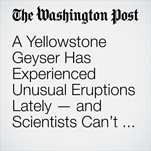 A Yellowstone Geyser Has Experienced Unusual Eruptions Lately — and Scientists Can't Explain Why copertina