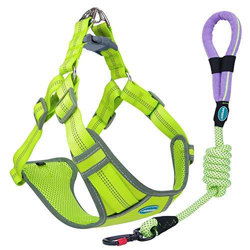 ThinkPet No Pull Front Clip-Gurtset - Gepolsterter, atmungsaktiver, reflektierender Westengurt, Reflektierende Hundeleine zum Laufen Laufen L Grün