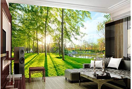Fototapete Tapeten Wandbilder 3D Earth Landscape Forest Sunbeam Tapete Wandtapeten Für Schlafzimmer Wohnzimmer Büro (W) 250X(H) 175Cm