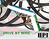 HPI 03-07 LS Vortec Standalone Harness 4.8 5.3 6.0 (DRIVE BY WIRE) (GREEN/BLUE PCM) & MULTEC/DELPHI, FUEL INJECTOR CONNECTORS (T56 (Non Electric) DBW)