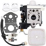 Kizut PB250LN Carburetor for Echo PB250 ES250 ES-250 PB-250 PB-250LN Leaf Blower A021003661 RB-K106...