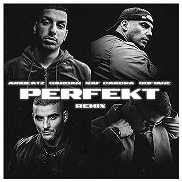 Perfekt (Remix)