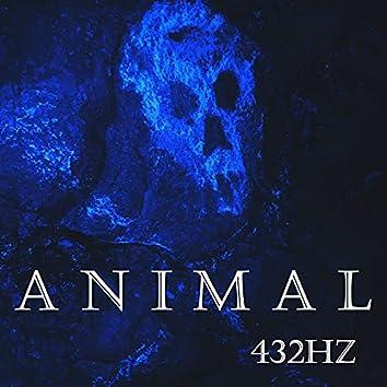 ANIMAL 432HZ
