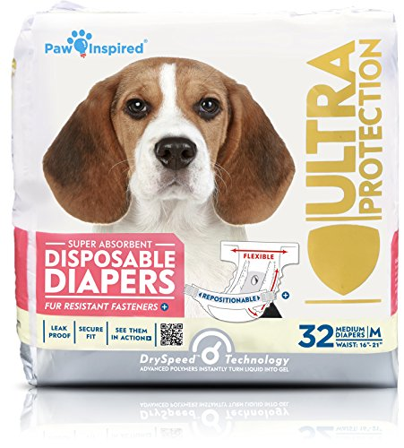Male Dog Diapers for Heat Cycle
