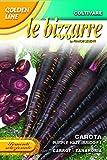 semi di carota viola purple haze ibrido f1 - fanchi sementi -sementi selezionate glbz 23/46 bustina gr 0,3