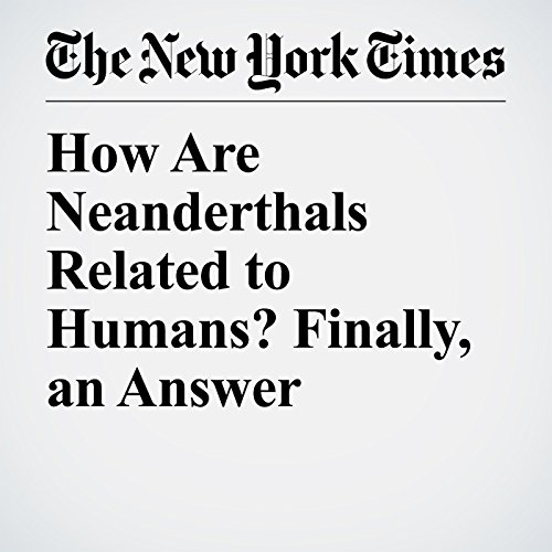 How Are Neanderthals Related to Humans? Finally, an Answer audiobook cover art