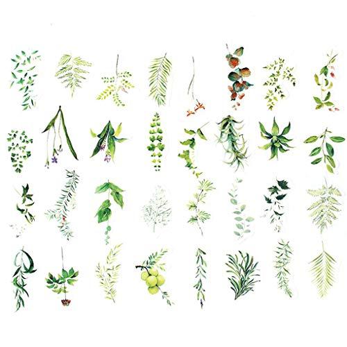Rekkles Las Plantas Verdes 34PCS impresión Fina Formas Irregulares Arte de Papel bibliografía de la técnica engomadas del Diario
