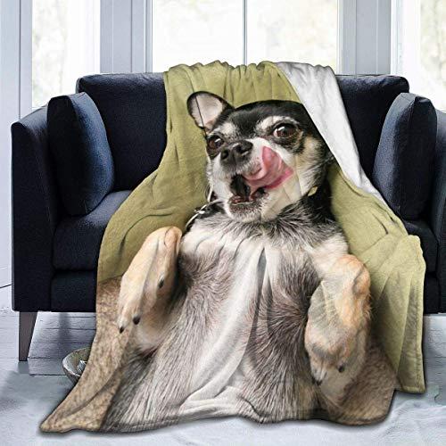 Chihuahua - Manta suave para perro, 152 x 122 cm, ligera, de franela para sofá, cama, viajes, camping, para niños y adultos