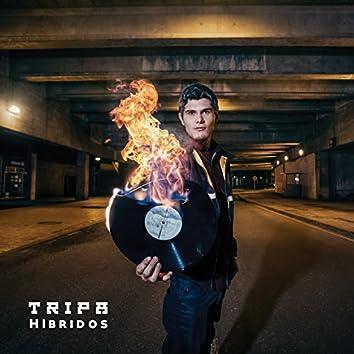 Híbridos - Single