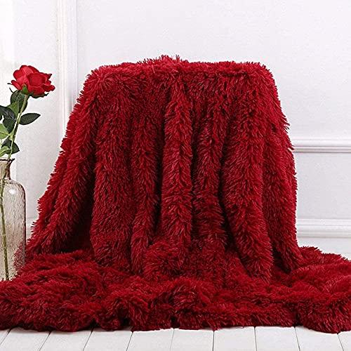 ZJDM Manta de Felpa súper Suave, Ropa de Cama Colorida, Funda para sofá, Piel Peluda y Peluda, cálida, acogedora, Manta de sofá para Invierno (Rojo Vino, 130 x 160 cm)