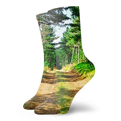 IUBBKI - Calcetines divertidos para vestir para hombres/mujeres, camino de campo en el jardín, coloridos, divertidos, novedosos, locos