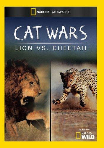 Cat Wars: Lion Vs. Cheetah [Edizione: Stati Uniti] [USA] [DVD]