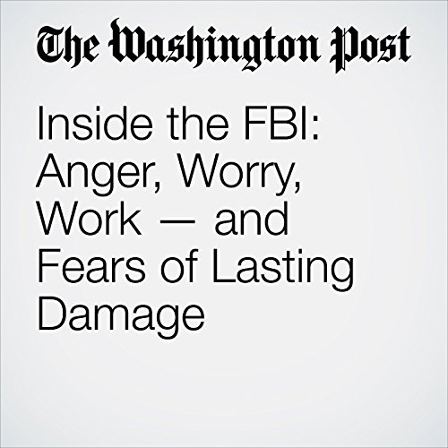 Inside the FBI: Anger, Worry, Work — and Fears of Lasting Damage copertina
