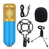 Kit de micrófono de sonido de condensador profesional Conferencia Karaoke Micrófono dinámico Cable de micrófono con soporte de choque talla única 5