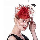 ayaso Diadema para mujer, para novia, para el pelo, accesorio para el pelo, accesorio para el pelo, accesorio para bodas, diademas para el pelo