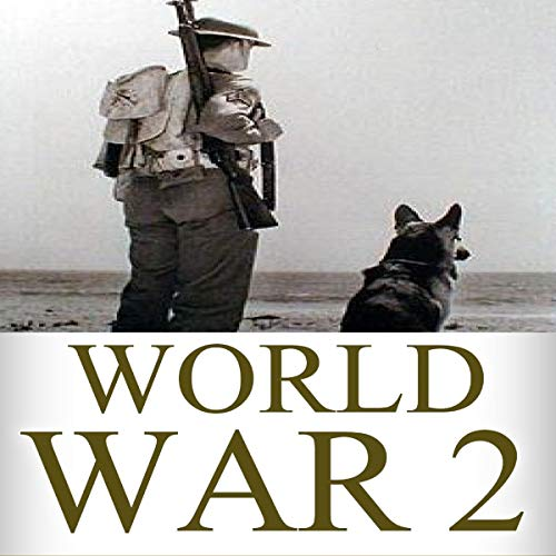 World War 2: Soldier Stories: The Untold Stories of the Soldiers on the Battlefield of WW2 cover art