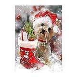 sunnymi Hund 5D Diamant Malerei Stickerei Weihnachten Geschenk Painting Bilder DIY Diamond (40cm *30cm)