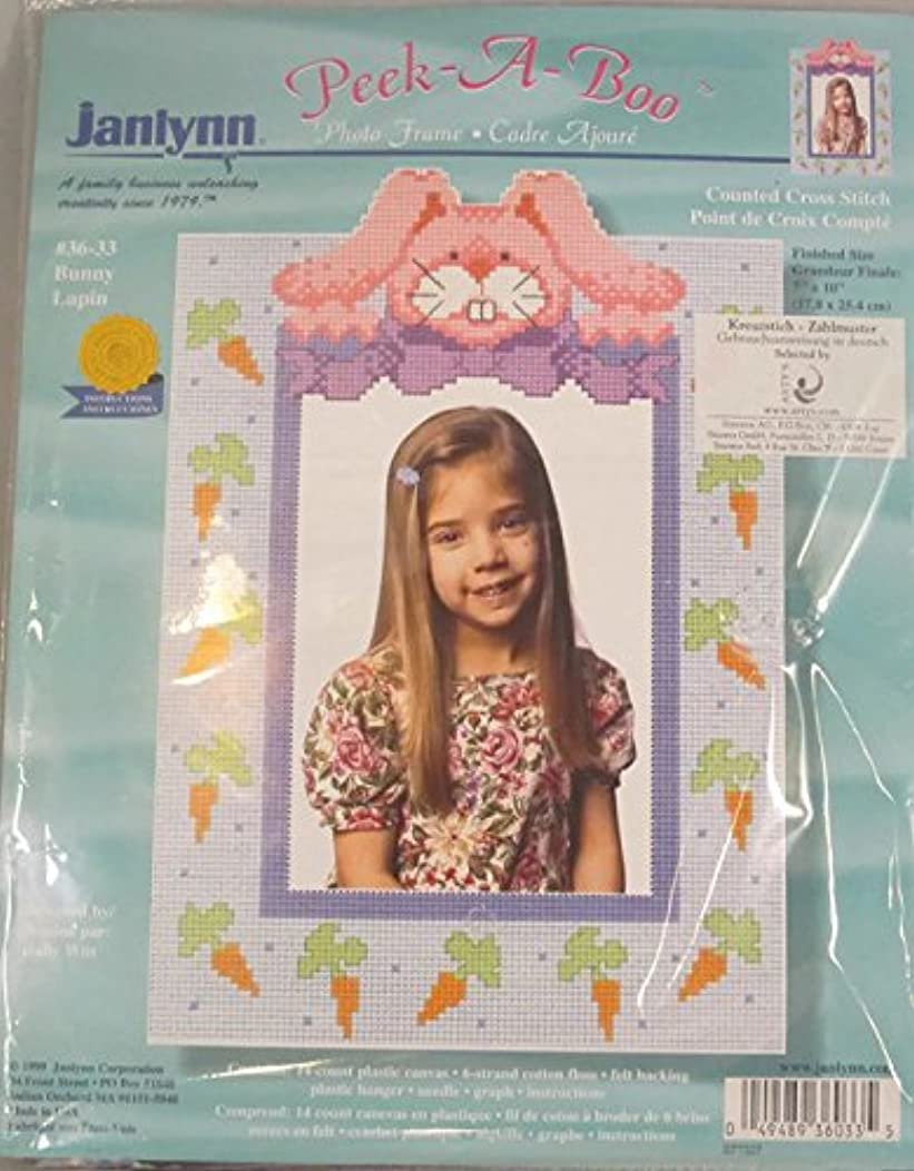 Janlyyn Peek-a-Boo Bunny Lapin Counted Cross Stitch Kit