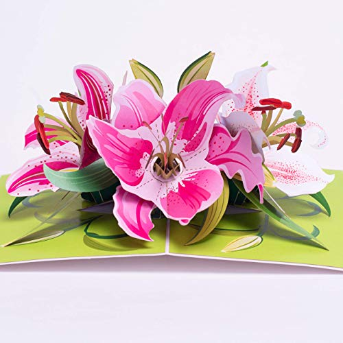 Pop Up Greeting Card Lily Flower- 3D Cards For Birthday, Anniversary, Mothers Day, Thank You Cards, Card for Mom, Congratulation Card, Love Card, All Occasion