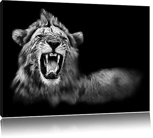 Pixxprint Dark Brüllender Löwe Schwarz-Weiss als Leinwandbild | Größe: 60x40 | Wandbild| Kunstdruck | fertig bespannt