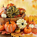 HAKACC 14 PCS Artificial Lifelike Simulation Mixed Pumpkins Fake Pumpkins with 30PCS Fake Maple Leaves Festival Thanksgiving Fall Harvest Home Decoration