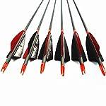 MS Jumpper Archery Carbon Arrows, High Percentage Carbon
