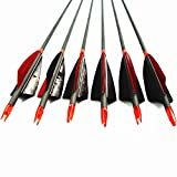 MS Jumpper Archery Carbon Arrows, High Percentage Carbon-Fiber Arrow Spine 400 with 4' Real Feathers 100 Grain Points for Hunting/Targeting Compound/Recurve/Long Bow 6Pack (31inch)