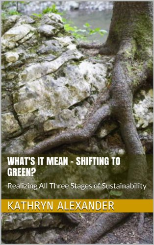What's It Mean - Shifting To Green? (Sustainable Intelligence Book 1)