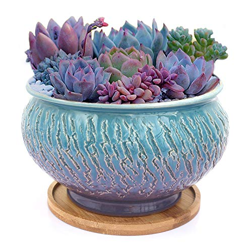 Color Glazed Vintage Round Ceramic Succulent Plant Pot with Drainage Hole and Tray, Succulent Holder, Bonsai, Flower Vase, Garden Decorative, Cactus Plants Stand, Artificial Topiary Potted Container