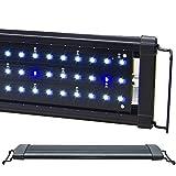 BeamsWork LED 1W HI Lumen Aquarium Light Marine FOWLR Cichlid (DHL 72')