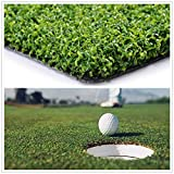 Conscience Trading Golf Putting Green Turf (0.47' Custom Size) Multi-use Artificial Grass Carpet...