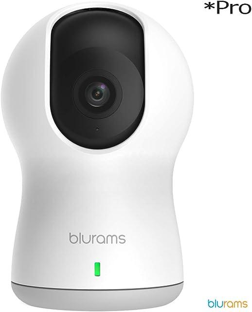 Blurams Dome Pro 1080p FHD Cámara de Vigilancia en Domo para el Hogar-WiFi Mic.Alt Detección Inteligente Personas/Animales/Sonidos Alertas Tiempo Real Visión Panorámica - Modo Crucero (iOS Android)