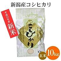 帯祝いに[新米・玄米]新潟米コシヒカリ 10kg [新潟産こしひかり]