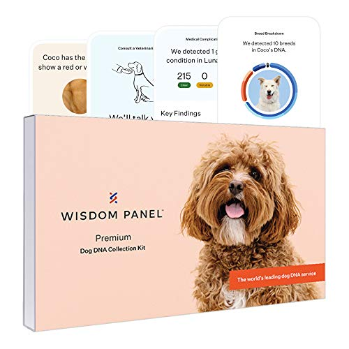 Dog DNA kit