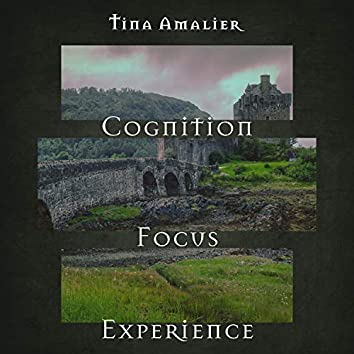 Cognition, Focus, Experience