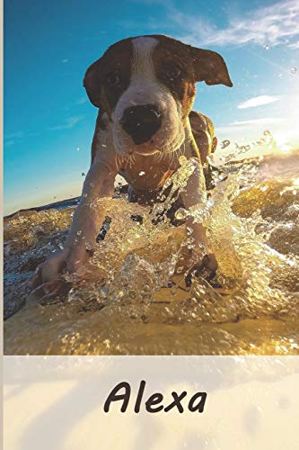Alexa: Tagebuch / Journal Personalisiertes Notizbuch Alexa - individuelles Namensbuch mit Hunde Motiv   DIN A5 100 Seiten   liniert